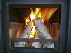 Holz Kaminofen